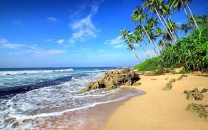 природа, тропики, море, камни, пляж, пальмы