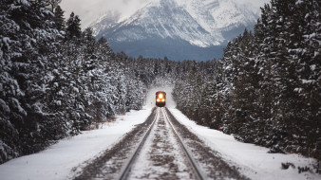 рождество, лес, поезд, снег, зима