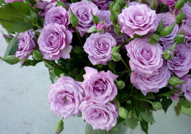 сиреневые, розы, букет