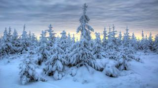обои для рабочего стола 1920x1080 природа, зима, снег, сугробы