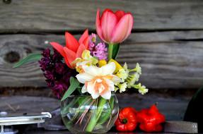 обои для рабочего стола 2560x1696 цветы, букеты,  композиции, тюльпан, гиацинт, нарцисс
