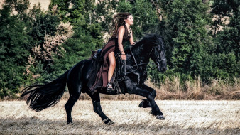 наездница, лошадь