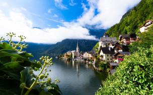 города, гальштат , австрия, озеро, лето, панорама