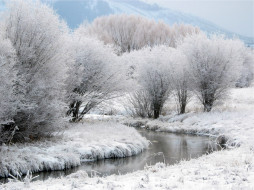 деревья, речка, снег