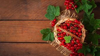 еда, смородина, корзинка, красная, ягоды