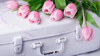 розовые, тюльпаны, бутоны, чемодан