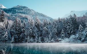 природа, лес, зима, мороз, утро, горный, пейзаж, снег, зимний, альпы, швейцария