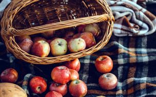 еда, яблоки, корзинка, урожай