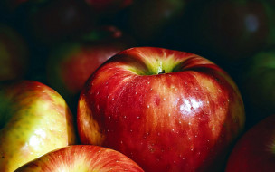 еда, яблоки, макро