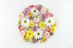 обои для рабочего стола 2560x1707 цветы, разные вместе, альстромерия, герберы, розы