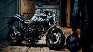 мотоциклы, suzuki, мотоцикл, 2018, sv650x