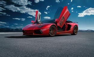 автомобили, lamborghini, aventador, svj63, 2020, красный, суперкар