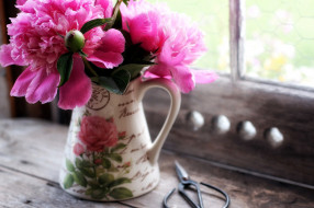 цветы, пионы, кувшин, розовые, букет