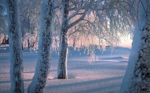 обои для рабочего стола 1920x1200 природа, зима, снег, сугробы