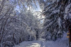 обои для рабочего стола 1920x1280 природа, зима, снег, сугробы