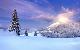 природа, горы, снег, деревья, солнце