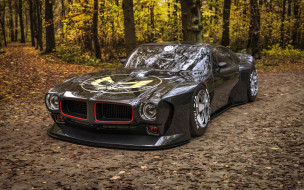 pontiac firebird black mamba, автомобили, 3д, pontiac, firebird, black, mamba