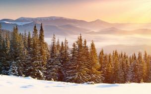 природа, горы, лес, снег