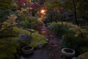 природа, парк, сад