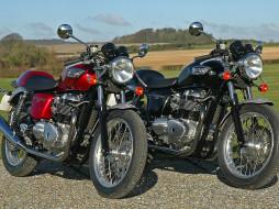 обои для рабочего стола 1600x1200 мотоциклы, triumph