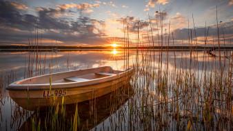 закат, лодка, камыши