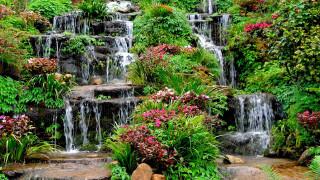 природа, парк, кусты, водопады