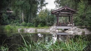 природа, парк, лес, озеро, беседки