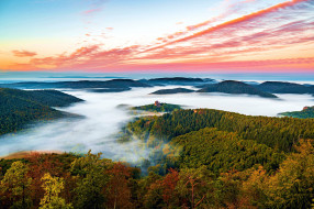 palatinate forest, germany, природа, лес, palatinate, forest