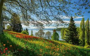 Lake Bodensee, Germany