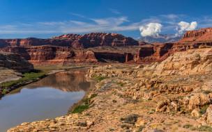 grand canyon, colorado river, utah, usa, природа, реки, озера, grand, canyon, colorado, river