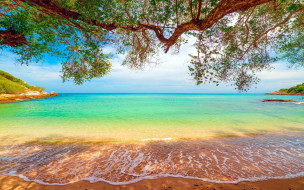 природа, тропики, море, пляж