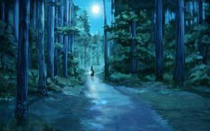 человек, лес, луна, дорога