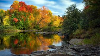 природа, реки, озера, озеро, осень