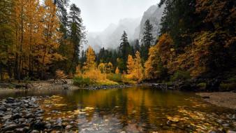 природа, реки, озера, река, осень, камни