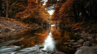 природа, реки, озера, горная, река, камни