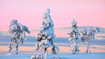 природа, зима, снег, сугробы