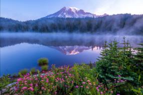 mount rainier national park, washington state, природа, реки, озера, mount, rainier, national, park, washington, state