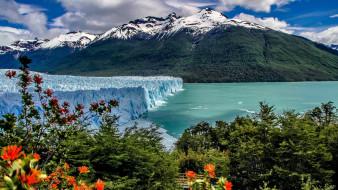 peitro moreno glacier, argentina, природа, айсберги и ледники, peitro, moreno, glacier