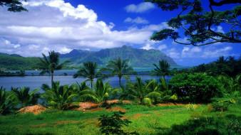 kaneohe fish pond, hawaii, природа, тропики, kaneohe, fish, pond