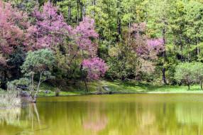thailand, природа, реки, озера
