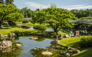 природа, парк, водоемы, мостик, камни