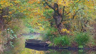 осень, заводь, лодка