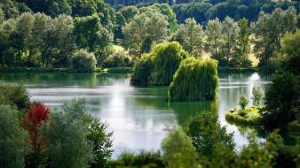 природа, реки, озера, река, деревья
