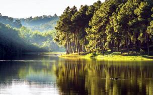 природа, реки, озера, лето, река, туман