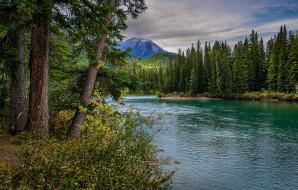 alberta, canada, природа, реки, озера