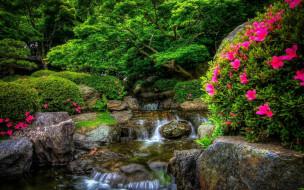 природа, парк, цветущие, кусты, водопад
