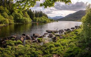 природа, реки, озера, горы, река, камни