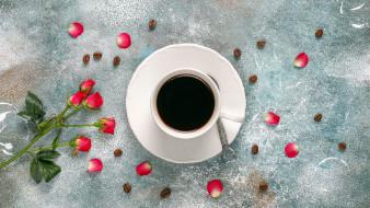 еда, кофе,  кофейные зёрна, розы, лепестки