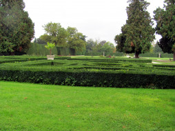 природа, парк, ландшафтный, дизайн