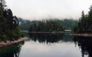 обои для рабочего стола 2560x1600 природа, реки, озера, лес, река, туман